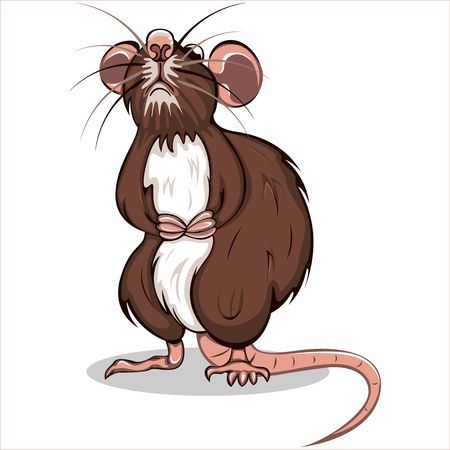 Vector of big brown rat standing on back paws 向量圖像