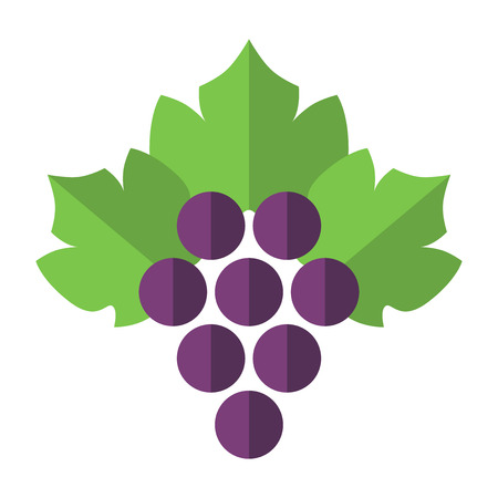 purple grapes: Purple grapes with green leaves isolated on white background. Flat design. Vector illustration. EPS 8, no transparency