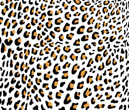 Leopard skin vector 向量圖像