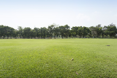 green park: Green park and sky