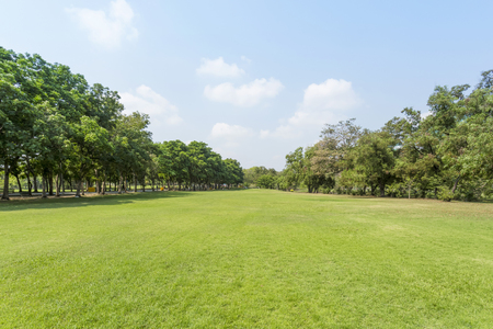 Groen park en de hemel