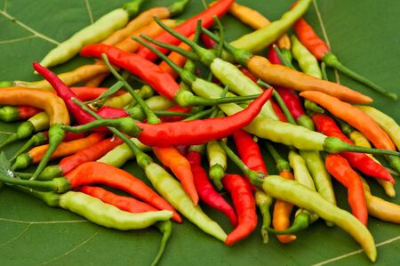 hot chilli Stock Photo