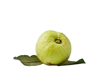 guajava tropical fruit on white background