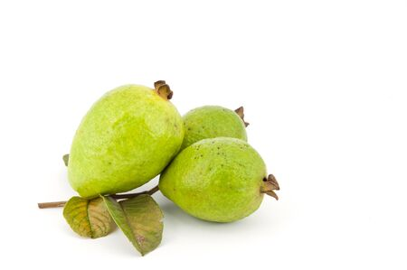 fresh guava fruit on white background