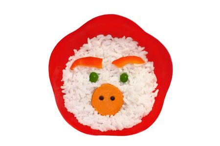 Face made of rice photo