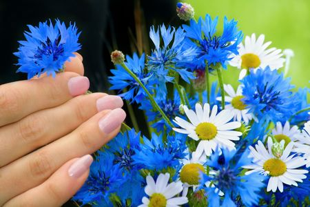 Hand of woman on background of the flowers photo