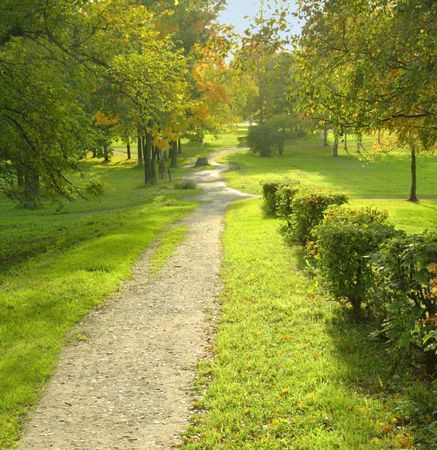 Path in the park  photo