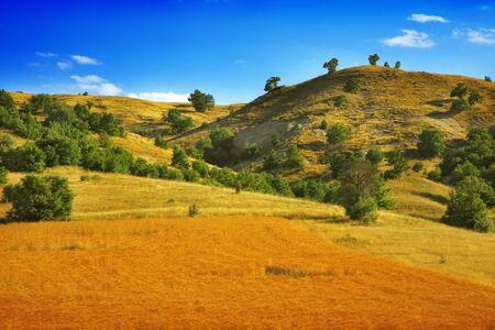 Landscape  Stock Photo - 6823836