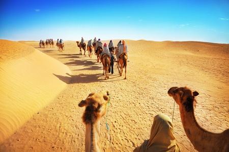 camello: La gente en el desierto del Sahara Foto de archivo