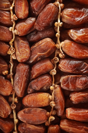 date palm tree: Date fruits