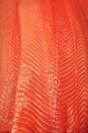 Close up of salmon fillet photo