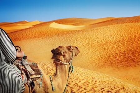 dromedaries: Sahara desert Stock Photo