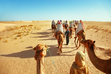 Die Menschen in der W?ste Sahara
