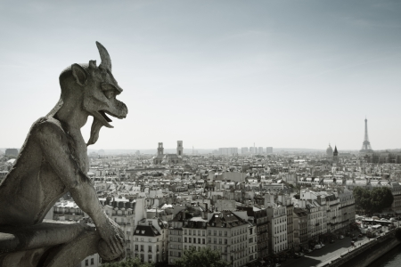 The Gargoyle of Notre Dame looking out over Paris photo