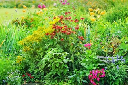 Flower garden Stock Photo - 22303882