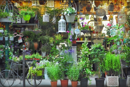 Flower shop in Paris, France photo