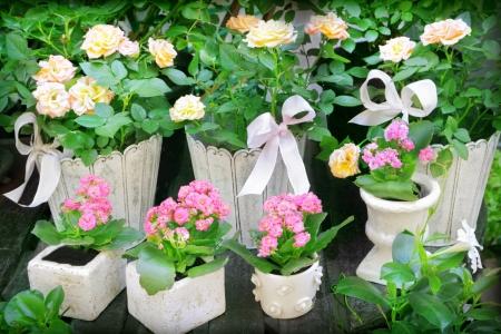 Flower shop in Paris, France Stock Photo - 22689618