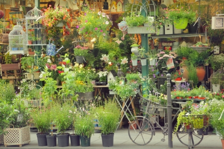 parisian scene: Flower shop