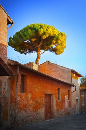 Italian backyard photo