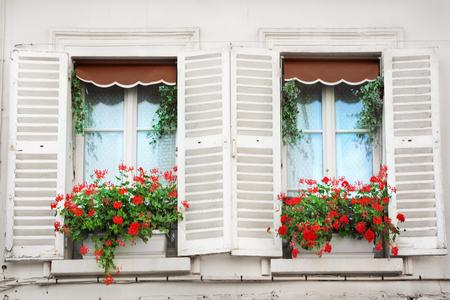 windowpanes: Windows in Paris
