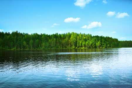 Forest lake Stock Photo - 32334075