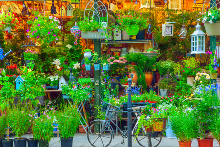 Flower shop in Paris, France Stock Photo