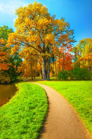 Autumn landscape Archivio Fotografico