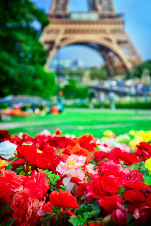 blue romance: Flowers and Eiffel tower
