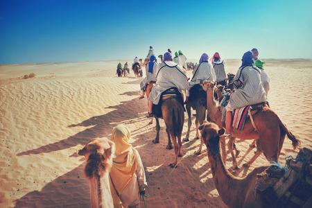 dromedaries: People in the Sahara desert