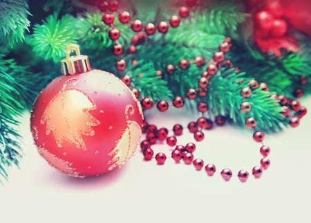 fir twig: Christmas fir twig on white background
