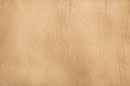 hider: Leather texture