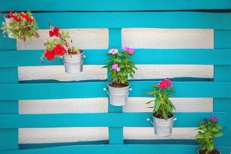 flowerpots: Flowerpots