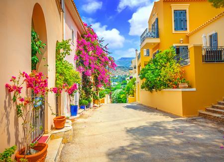 bougainvillea flowers: Street in Kefalonia, Greece