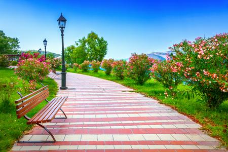 banc de parc: City park