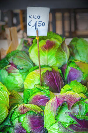 cabbages: Cabbage Stock Photo