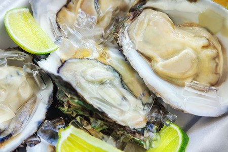 shell: A platter of fresh oysters