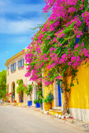 greek pot: Street a Cefalonia, Grecia Archivio Fotografico