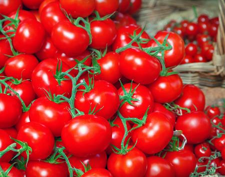 Close up of tomatoes Foto de archivo