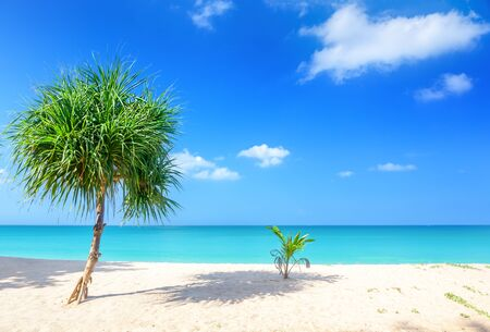 Beach and tropical sea in Thailand Foto de archivo