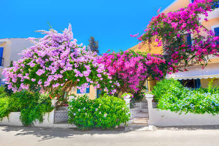 Traditional white house with flowerpots at Kefalonia island, Greece