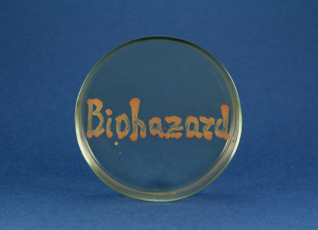 colonies: Biohazard inscription is maded up by living bacteria on petri dish. Letters are orange bacterial colonies growing on agar surface. Oil-degrading culture used. Stock Photo