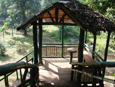meeting place: Meeting place at a height in a jungle in a placed named Dandeli in India