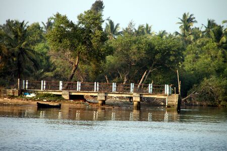 ambience: Jetty by the river side surrounded by lush green trees. Overall calm and quiet ambience