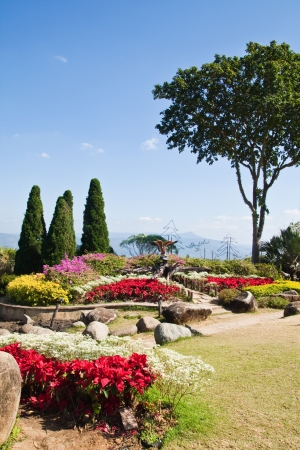 The beautyful garden on the mountain and the blue sky