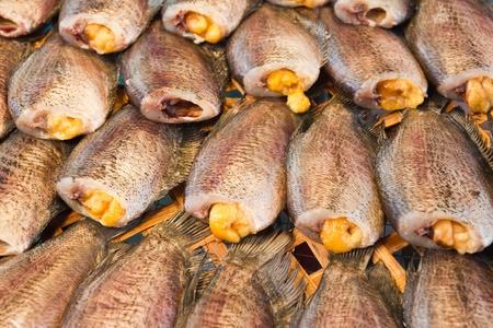 gourami: Dry Gourami fish Stock Photo