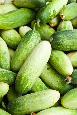 Pile of cucumber in fresh market , asian style vegetable , closeup background Stock Photo - 10371288