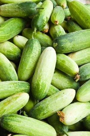 Pile of cucumber in fresh market , asian style vegetable , closeup background Stock Photo - 10416645