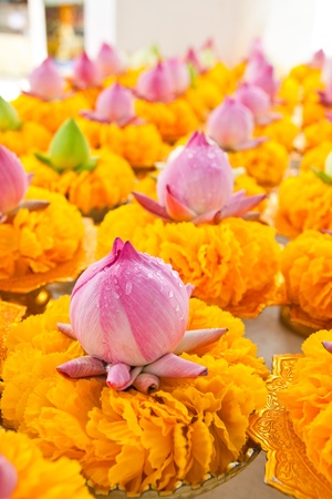 Row of lotus and yellow flower garlands on tray with pedestal in thai temple,Thailand. photo