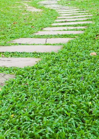 pave: Stone walk way on green grass in the garden.