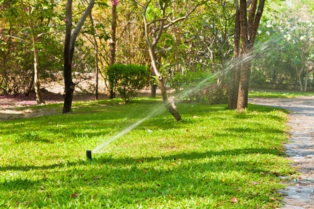 sprinkler watering lawn and garden  photo